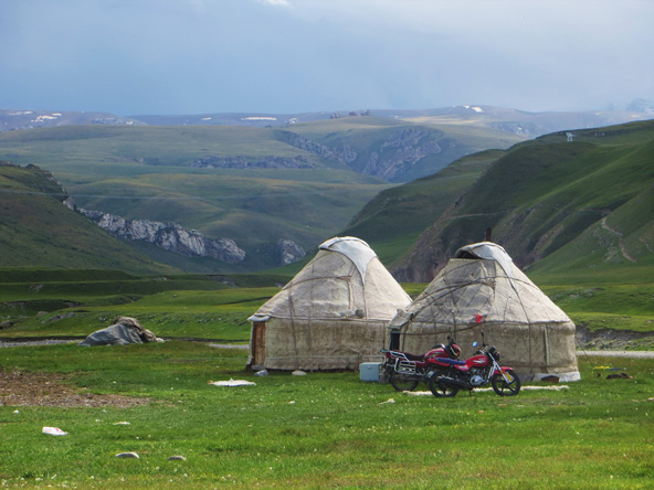 בבחירת המיקום של היורט, אוהל הנוודים, הצרכים של בעלי החיים קודמים | צילום: גיל סדגת