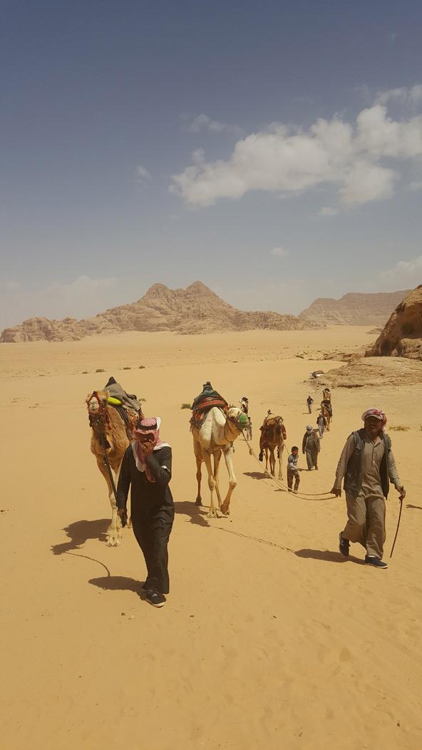 יום במדבר   צילום: ליהי רון