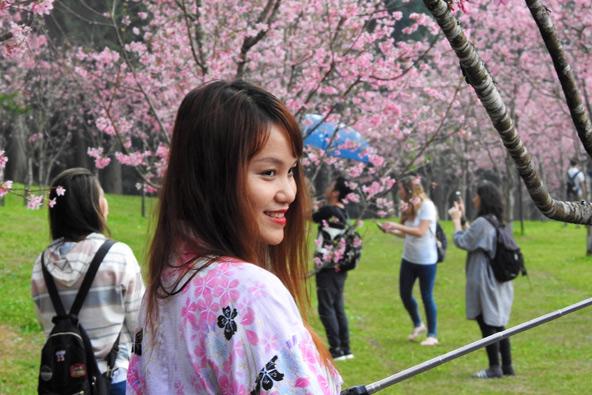 טייוואן: החיים באי