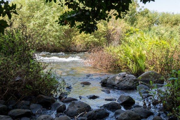 שמורת תל דן, נקודת המוצא של הטיול. בצפון יש מגוון מקומות בהם ניתן למלא מים