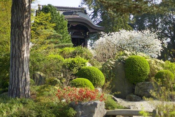 הגן היפני באביב, עם פריחת הדובדבן. הביקור בגנים הוא כמו טיול קצר מסביב לעולם