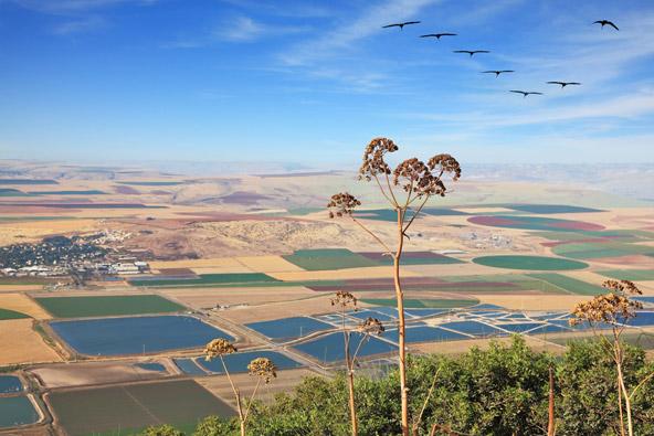 טיולים ואטרקציות בעמק בית שאן