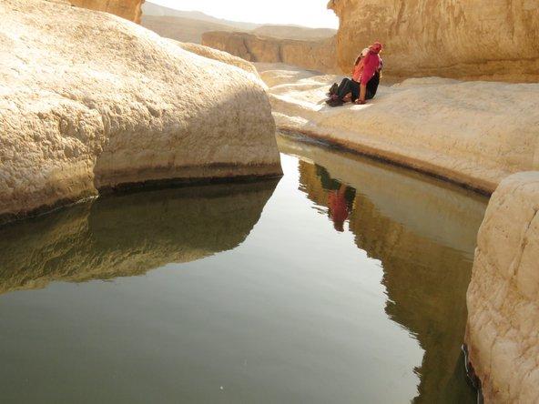 הצבע הלבן הבוהק של הסלעים בגבי פרס תורם ליופיו של המקום | צילום: אבי בלום