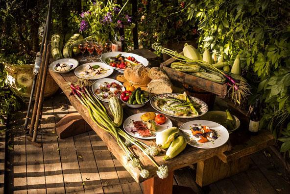 מסעדות חקלאיות: מהשדה לשולחן