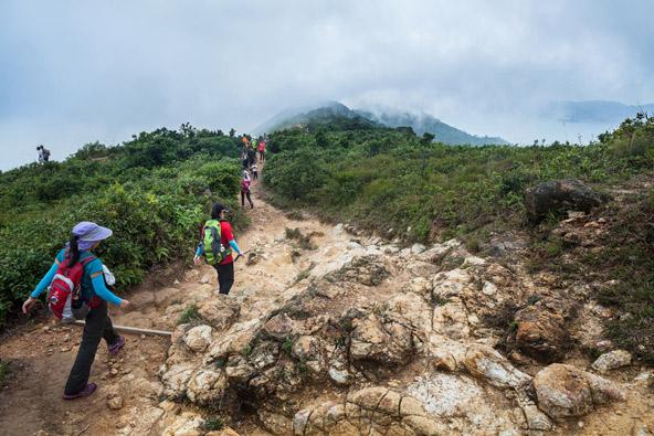 שביל גב הדרקון, הטרק הפופולרי ביותר בהונג קונג