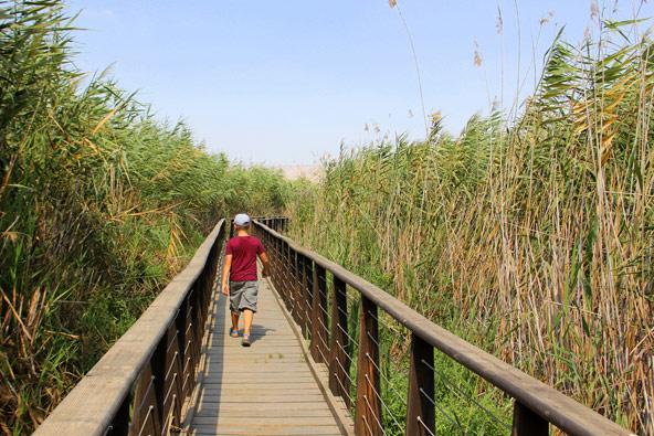טיול רגלי ארוך מאפשר להכיר את הארץ באופן מעמיק ויסודי