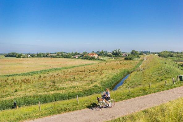 רכיבה על אופניים בנופים הפסטורליים של האי טסל | צילום: Marc Venema / Shutterstock.com
