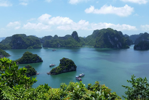 מפרץ האלונג, וייטנאם