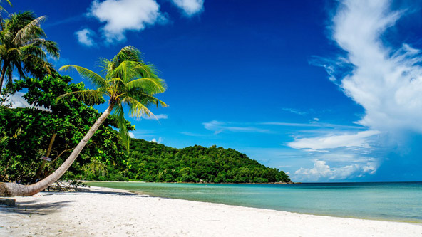 חוף באי פוקוק. גן עדן טרופי