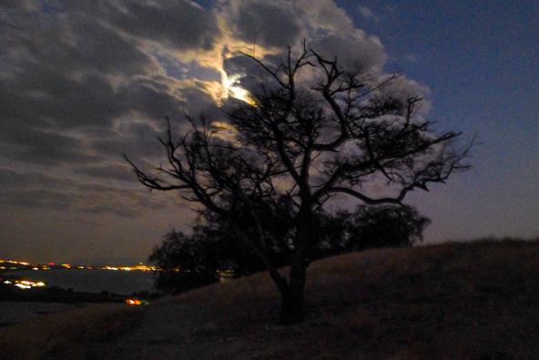 טיול לילי ממצפה אופיר לעין גב, צילום רותם פריפר