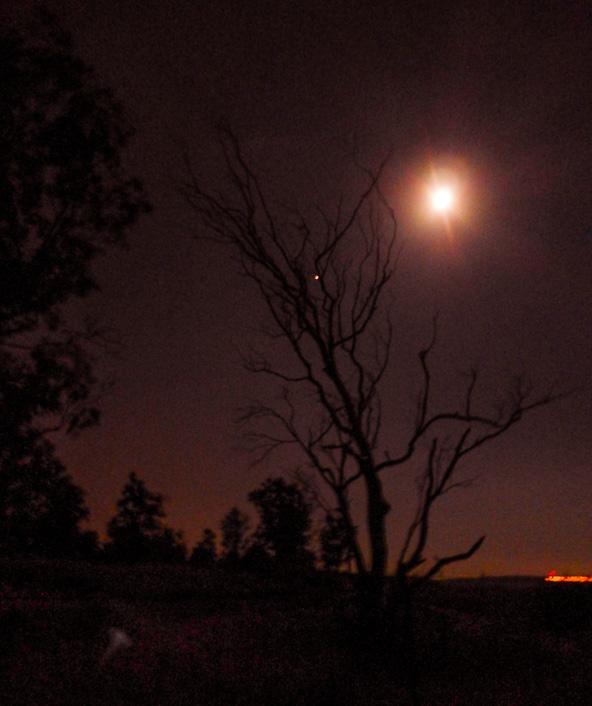 ירח מלא מאיר את הדרך למטיילים בין מצפה אופיר לעין גב   צילומים בכתבה: רותם פריפר