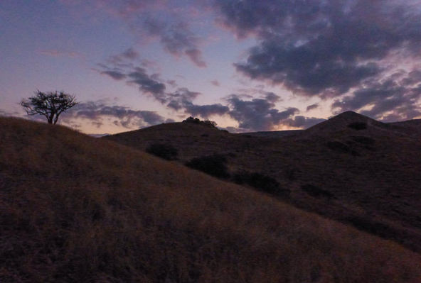 סוף המסלול - קרני שמש ראשונות מבצבצות מעל הגולן   צילום: רותם פריפר
