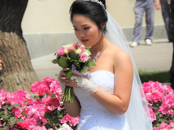 ריח הפריחה עלול לשבש את דעתו של אדם ולגרום לו להתאהב