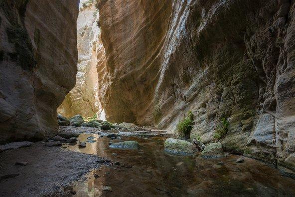 קניון אבאקס, שבו כמה מסלולי הליכה בדרגות קושי שונות