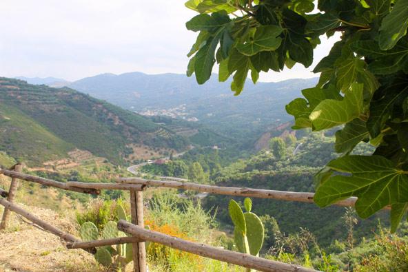 הנוף הנשקף מהגן הבוטני של כרתים, הסמוך לחאניה