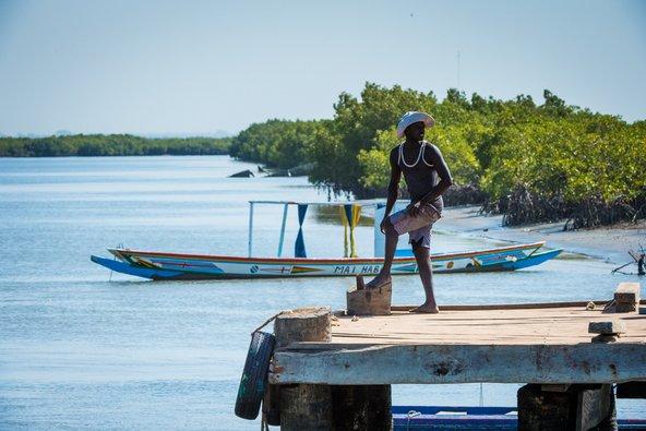 דייג בגמביה