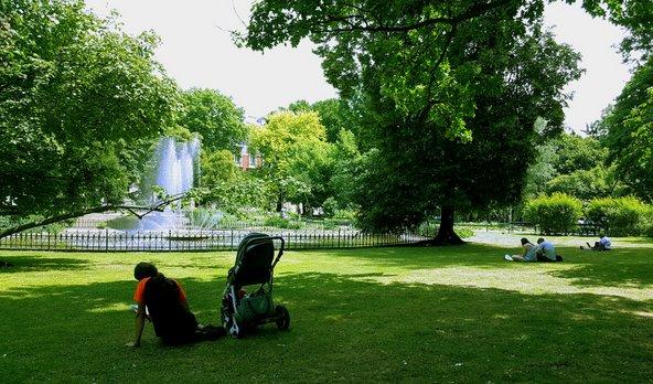 תופסים שלווה בפארק פלאנטי | צילום: Simple Photographer / Shutterstock.com