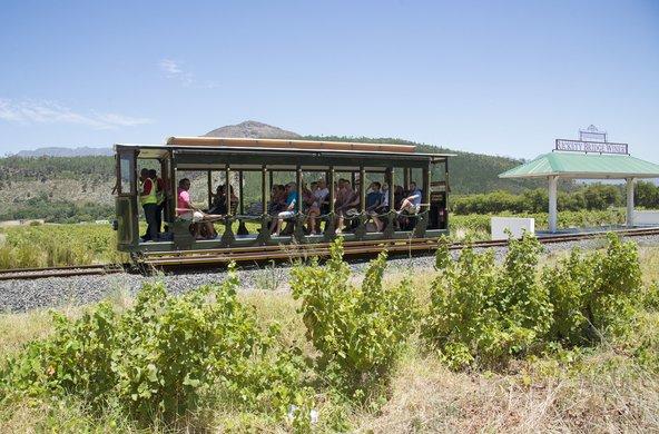 טראם היין שעובר בין הכרמים של הקייפ המערבי | צילום: Peter Titmuss / Shutterstock.com