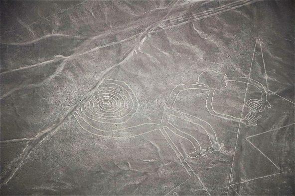 """צילום מטיסה מעל נאסקה: """"הקוף"""""""