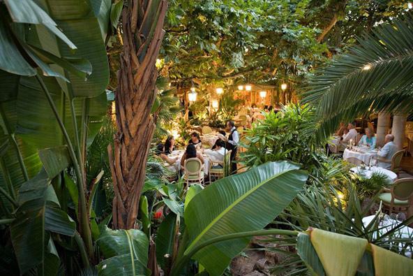 הגינה של מסעדת ל'אואסיס