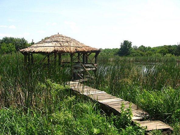 פדוראה דומניסקה, שמורת הטבע הגדולה במדינה