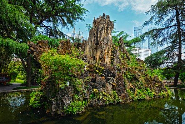 פינת חמד בפארק וונג ג'יאנג לו