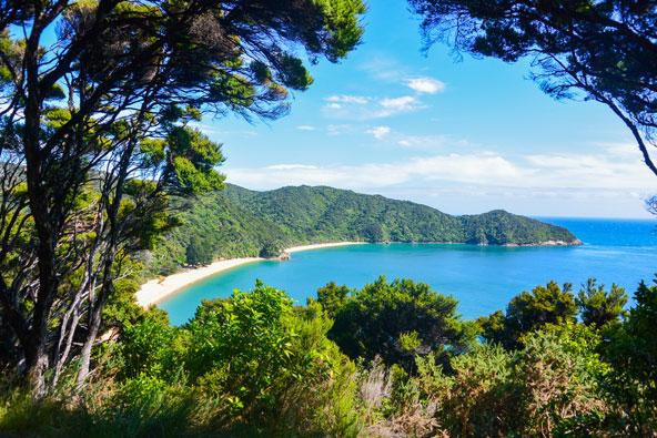 יער טבעי נושק לחופים מוזהבים בפארק אבל טסמן