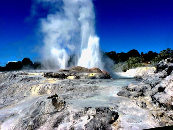 גייזר מתפרץ בפארק טה פויה