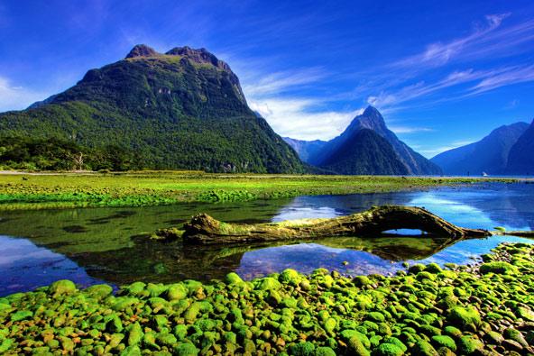 טיול מקיף בניו זילנד: יופייה הגלוי