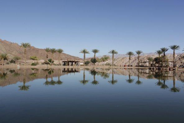 אגם בלב מדבר. באגם שבפארק תמנע אפשר לשוט בסירות פדלים