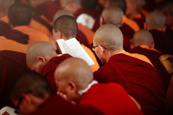 נזירים במנזר נמדרולין, במדינת קרנטקה שבדרום הודו