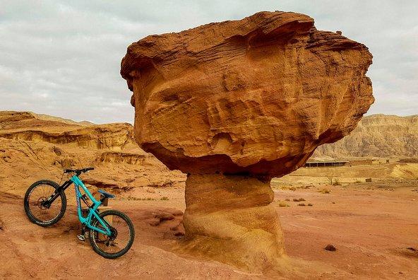 מסלולי האופניים בפארק תמנע עוברים דרך אתרי הפארק המפורסמים ובהם הפטרייה
