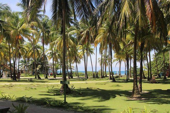 חופים באי ג'וני קיי