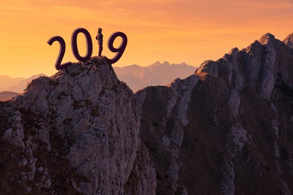 היעדים המבטיחים לשנת 2019