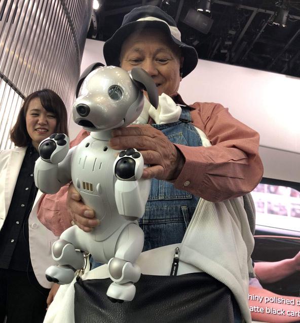 הרובוט-כלב אייבו משמש בין השאר בן לוויה לקשישים | צילום: עמי בן בסט