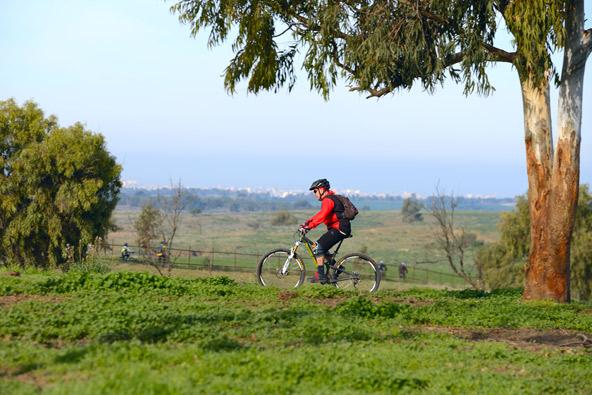 מסלול אופניים ביער בארי