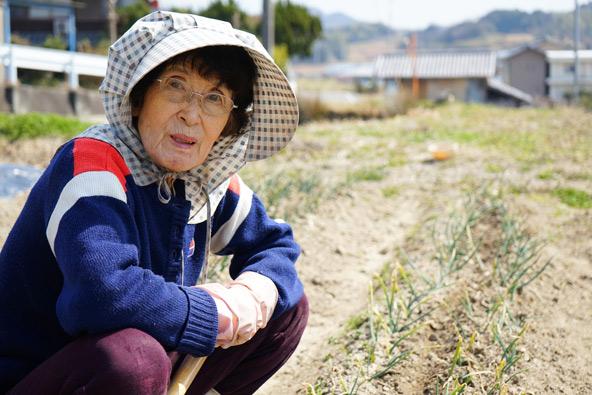 בשנת 2035 בני 65 ומעלה ביפן יהוו מעל 33.4 אחוז מהאוכלוסייה