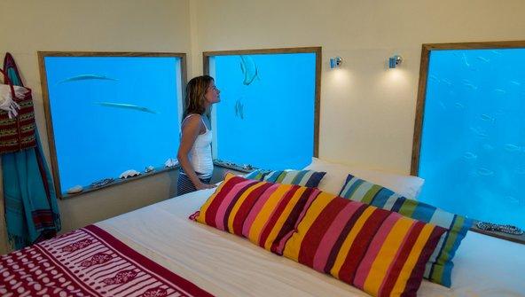 מן החלונות בחדר התת ימי ב-Manta Resort אפשר להשקיף על עולם תת ימי עשיר   צילום באדיבות © Manta Resort