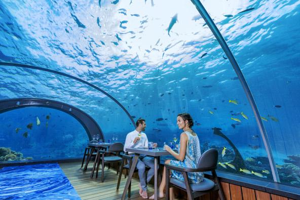 המסעדה התת-ימית 5.8 במלדיביים