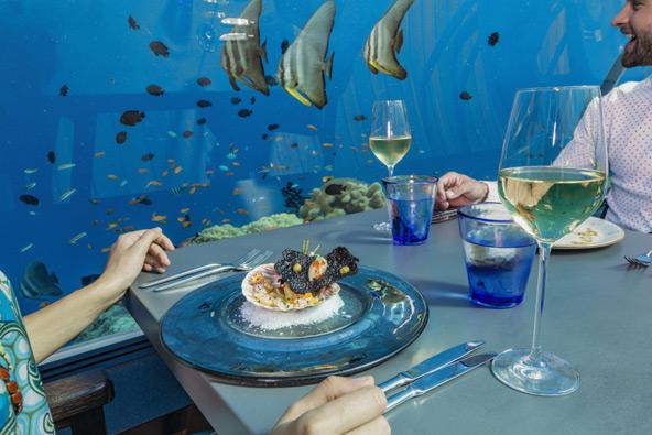 הי, זה לא אח שלי בצלחת? דגים בתפריט ודגים בים במסעדת 5.8 במלדיביים