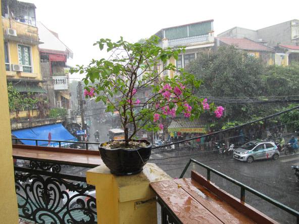 במרפסת של A Coffee, גשם פתאומי שוטף את רחובות העיר
