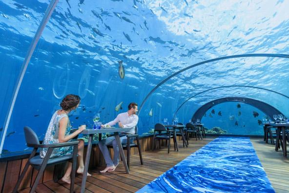 לאכול 5.8 מטרים מתחת לפני הים   צילומים באדיבות Hurawalhi Resort