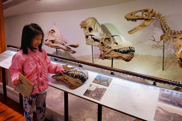 תצוגת דינוזאורים במוזיאון הטבע בטייפה