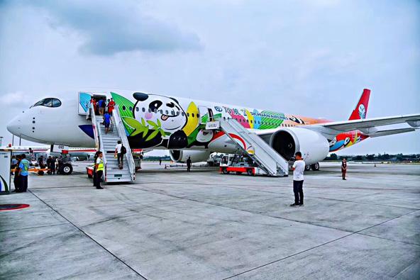 מטוס של חברת התעופה סצ'ואן איירליינס מעוטר בציורים של פנדות
