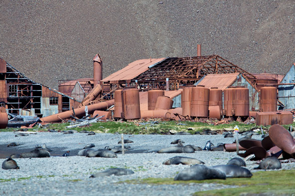 המפעל הנטוש לעיבוד שומן לווייתנים במפרץ סטרומנס, ממנו יצא שקלטון למסע לאנטארקטיקה