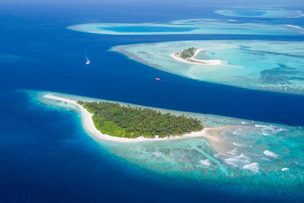 איים בסכנת היעלמות