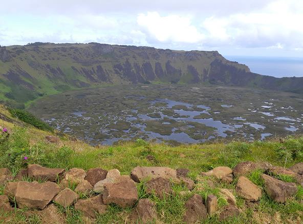 בעקבות בדיקה של אבקות צמחים מקרקעית האגמים בלועות הרי הגעש, קבעו החוקרים ג'ון פלנלי ושרה קינג כי אי הפסחא היה בעבר מיוער