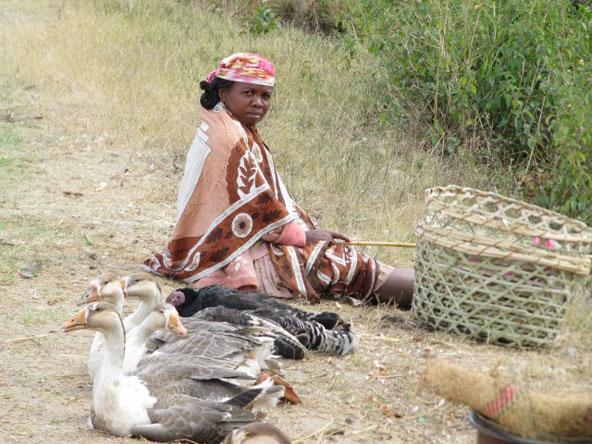 במדגסקר הכל מתנהל לאט, התרבות דוגלת באורך רוח ובאורך דיבור | צילום: ציפי מונט
