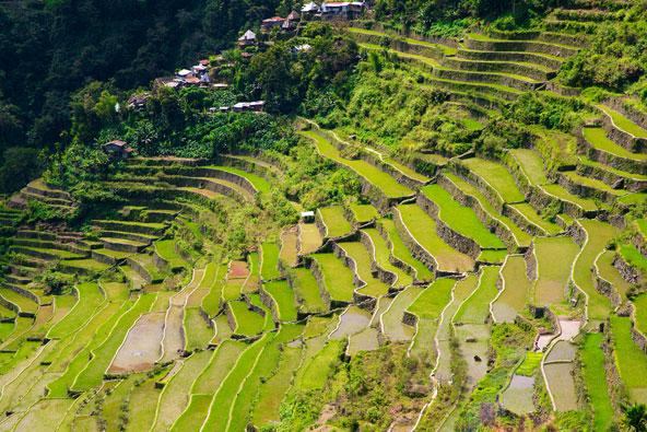 טרסות האורז של בנאו, אתר מורשת עולמית ופרויקט אדריכלי ותרבותי מעורר השתאות