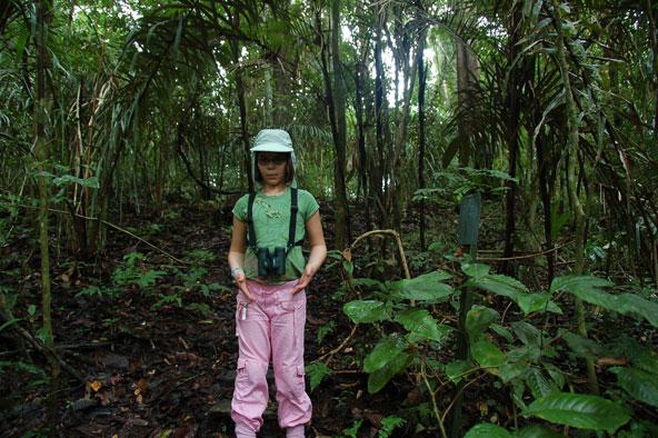 היער הטרופי באי בארו קולורדו בפנמה נותר בתולי, ללא הפרעה אנושית